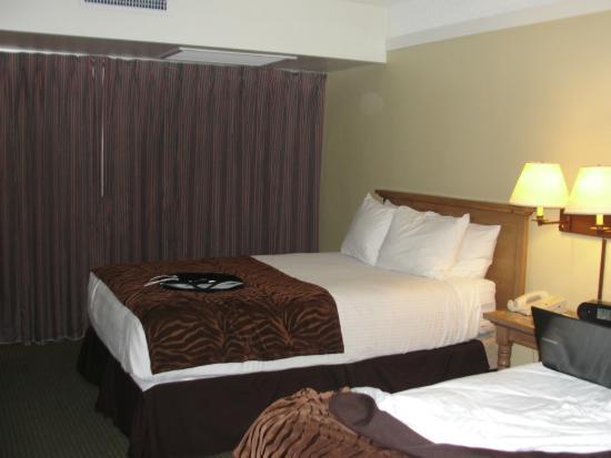 Atrium Hotel at Orange County Airport: Average room size