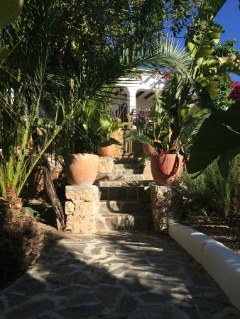 Hostal Buenavista: view in the garden