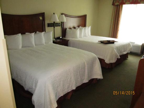 Hampton Inn & Suites Fort Myers-Estero/FGCU : Hotel room