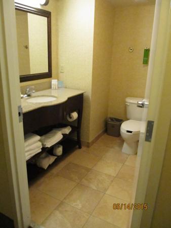 Hampton Inn & Suites Fort Myers-Estero/FGCU : Hotel bathroom