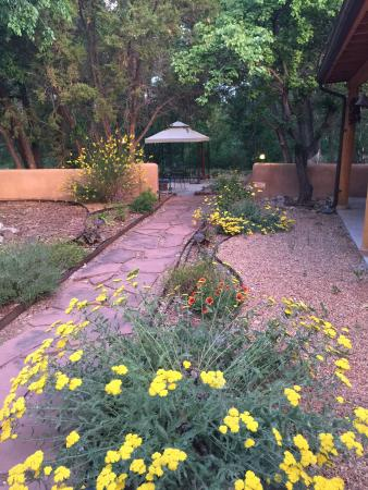 Casa Escondida Bed & Breakfast: The backyard, lots of areas to enjoy a book or nap