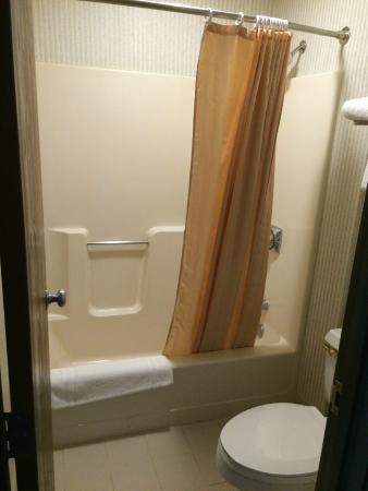 BEST WESTERN Airport Inn : Bathroom