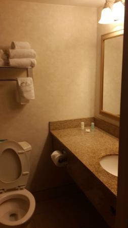 Comfort Inn Arlington Boulevard : bathroom a little tight