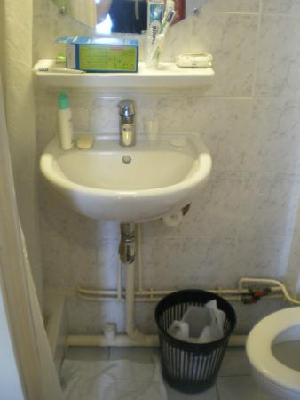 Hotel de la Place des Alpes: bagno