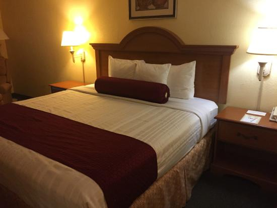 Best Western Fort Myers Inn & Suites : notre chambre