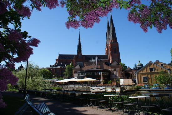 Uppsala län, Sverige: Cathédrale d'Uppsala