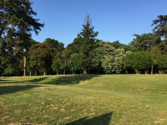 Domaine Saint Martin de Ronsac : le parc