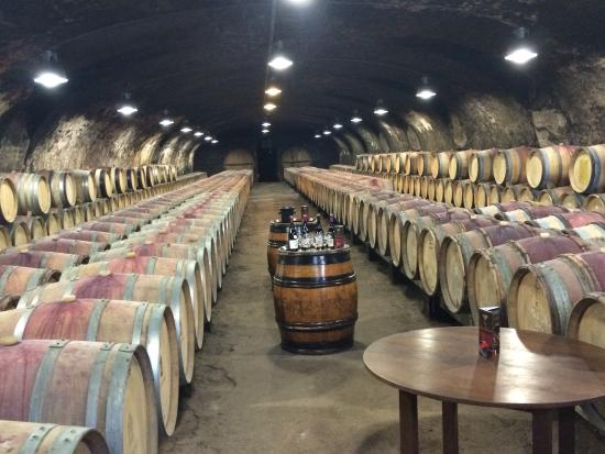 Kanpai Tours : Beaujolais Region
