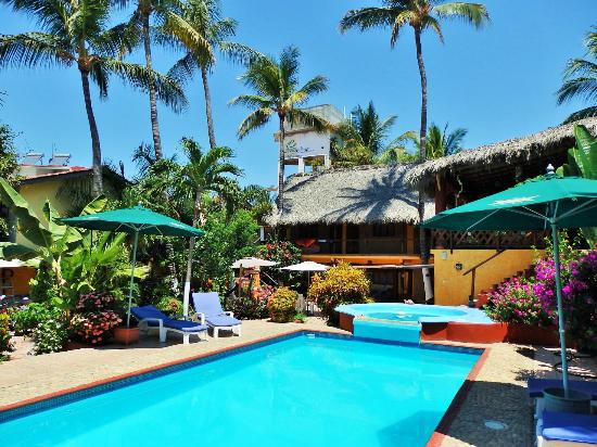 Hotelito Swiss Oasis : Our clean sweetwater pool