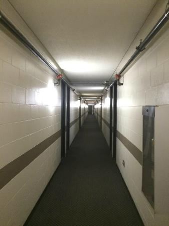 Winnipeg Thriftlodge: Sub-basement? No, second floor hallway.