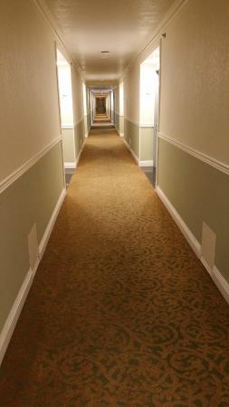 Hotel Huntington Beach: Hallway