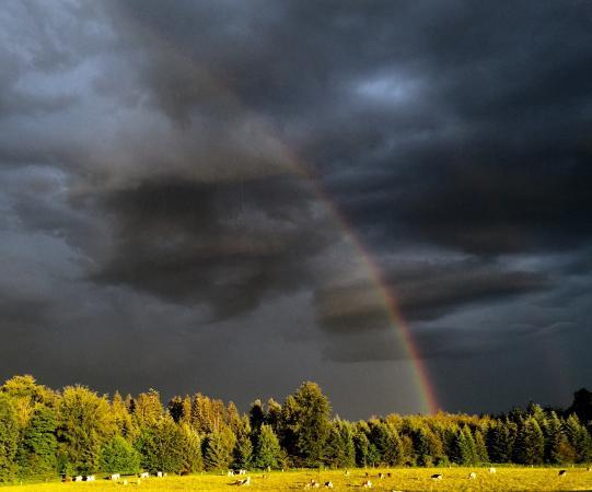 Auberge du Chalet-des-Enfants: Le paysage autour de l'auberge est splendide. Et quand un orage s'installe, cela devient extraor