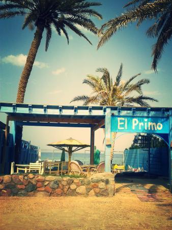 写真El Primo Hotel Dahab枚