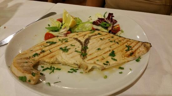 Fregene, Italia: Trancio di pesce spada alla griglia