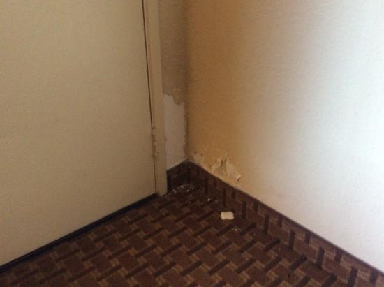 Econo Lodge Inn & Suites: Yuck