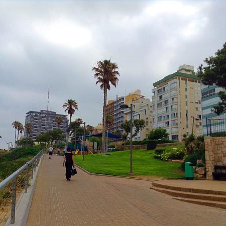 Ginot Yam Hotel: Вид на правую часть променада.