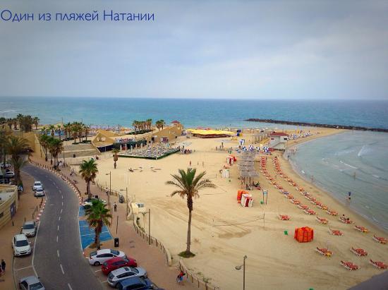 Ginot Yam Hotel: Пляж