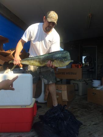 Daniels' Whalebone Seafood Market Photo