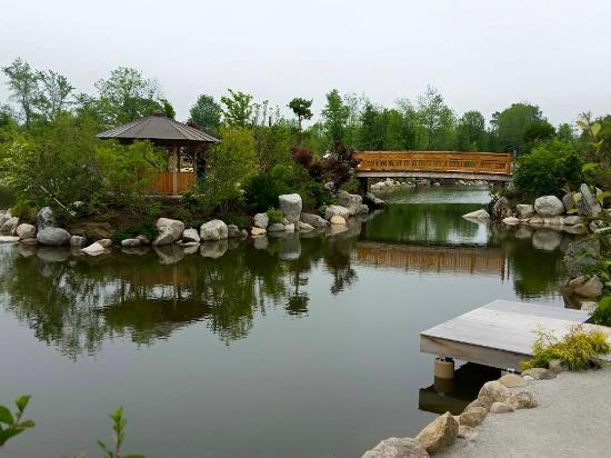 New Japanese Garden Picture Of Frederik Meijer Gardens Sculpture Park Grand Rapids