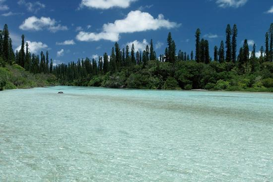 Natural pool lle des pins new caledonia picture of for Piscine naturelle