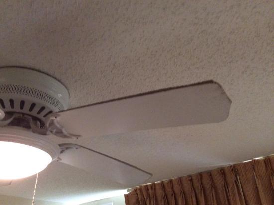 Homewood Suites by Hilton Corpus Christi: photo3.jpg