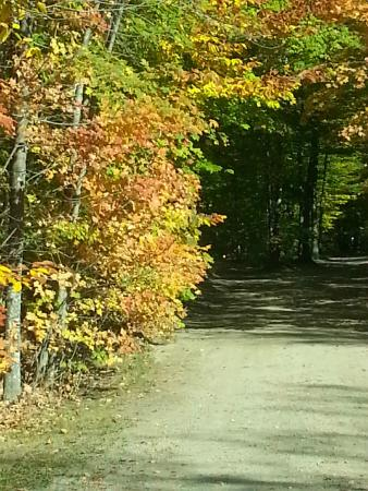 Crawford Notch General Store and Campground: The road running thru the campground