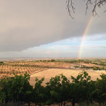 Seven Quails Vineyards Bed & Breakfast: Our first night view with a double rainbow!
