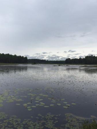 Grayling, MI: Wakely Lake
