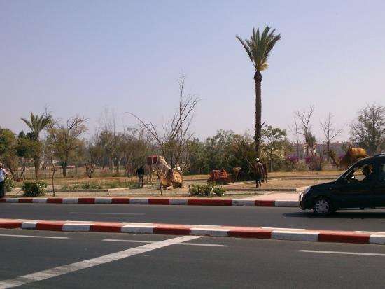 Taxi Amarrakech: Paseando en Taxi