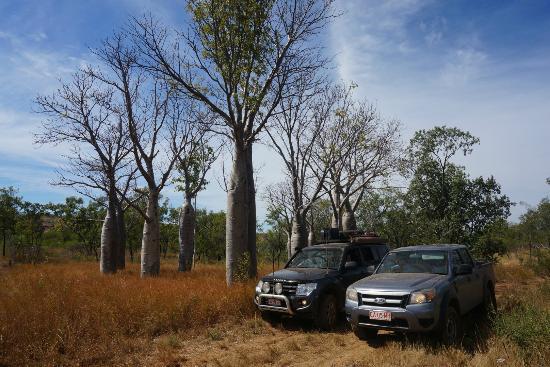 Judbarra / Gregory National Park: on Bullita Stock Route