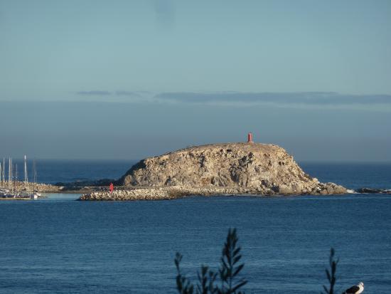 Penguin Island : Ständiges Ärgernis: Der private Club versperrt den Zugang zur Insel