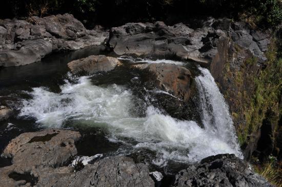 Rainbow Falls: 滝の上部から