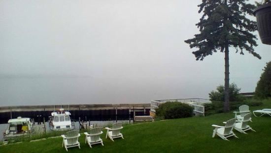 The Shoreline Resort: Lawn with chairs and deck for relaxing on. Dock and piers . . . water is out there under the fog