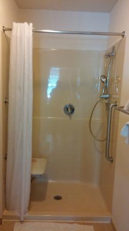 Host Inn All Suites Hotel : Shower