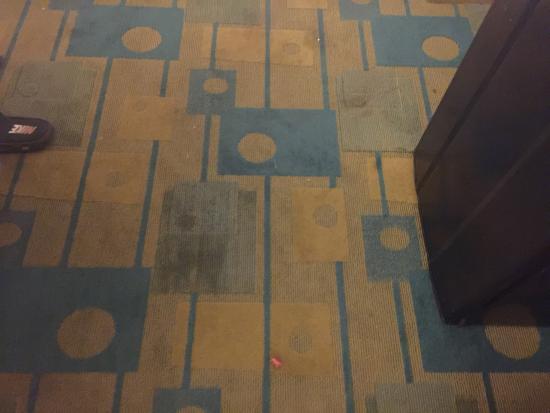 La Quinta Inn New Orleans West Bank / Gretna: Nasty floor