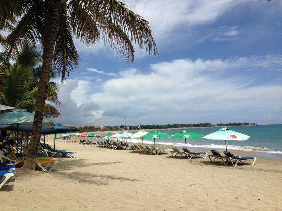 Phoenix spa and resort updated 2017 hotel reviews price comparison and 265 photos cabarete - Prise republique dominicaine ...