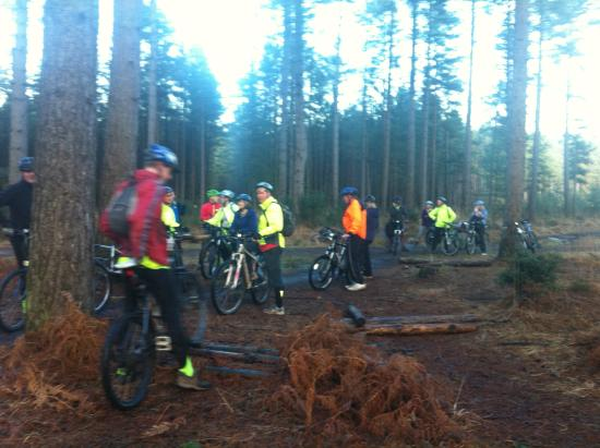 Bike Group Ready For New Forest Picture Of New Forest Cycling