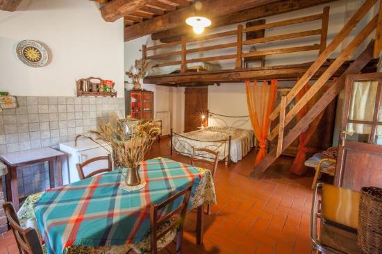 Castiglion Fiorentino, Italia: Appartamento  Tiglio