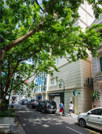 Conifer Boutique Hotel: Surrounding