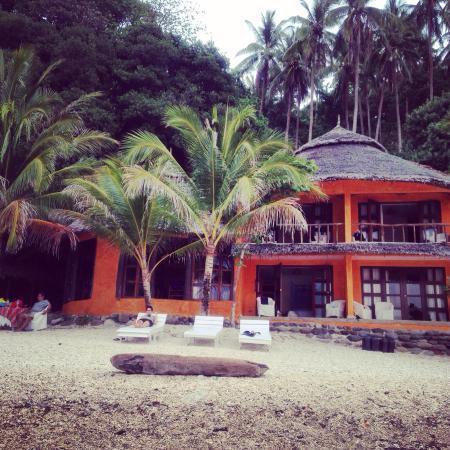 Apo Island Beach Resort Specialty Reviews Photos Rate Comparison Tripadvisor