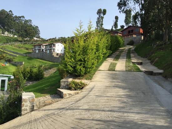 show user reviews nature trails kodaikanal tamil nadu