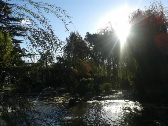 Foto de jardin japones buenos aires tripadvisor for Jardin japones de escobar