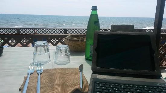 L'oasi di Capocotta: Relax e lavoro contemporaneamente