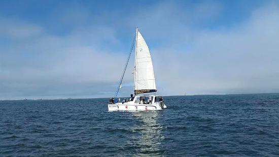 Sun Sail Catamarans: A view of the other Sun Sail Catamaran