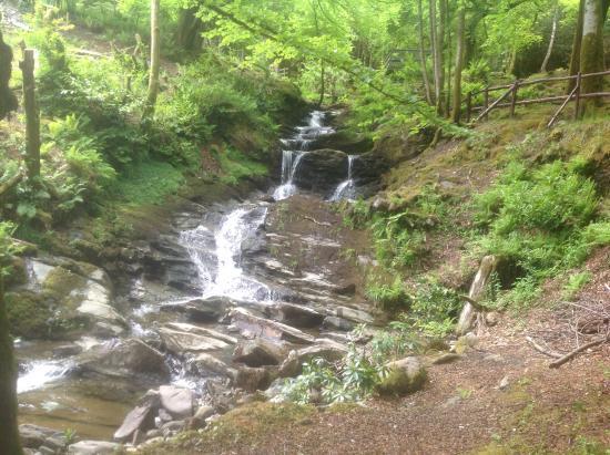 Glendaruel Caravan Park: Waterfall