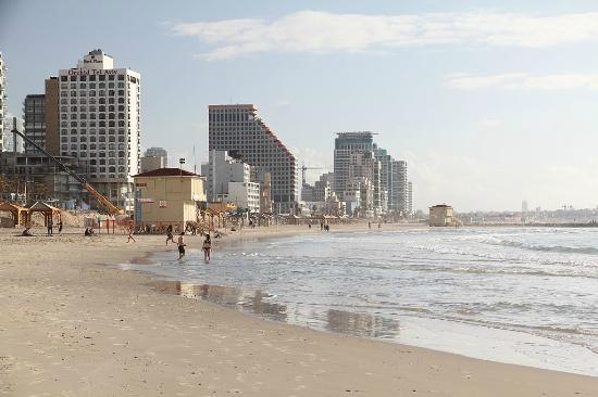 Tel Aviv Marina and Sea Center: Побережье