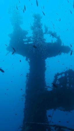 Abyss Diving Club: Mark Medew's photo
