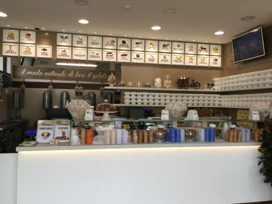 Panna & Cioccolato : Yogurt greco, yogurt frozen, smoothies, centrifughe...