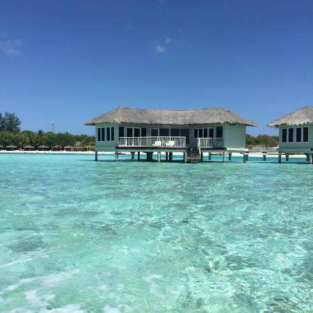 Farukolhufushi Island: 701 from water