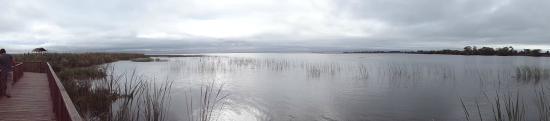 Colonia Carlos Pellegrini, Argentina: Vista de la laguna Iberá